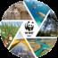 WWF Yeşil Ofis Sistemini Destekliyoruz